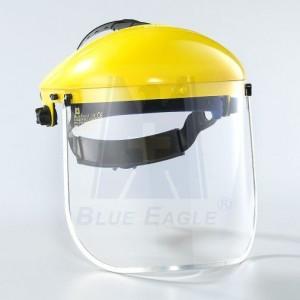 blue eagle helmet