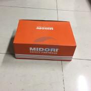 Giay-bao-ho-midori-dsf-02-protection.com.vn02