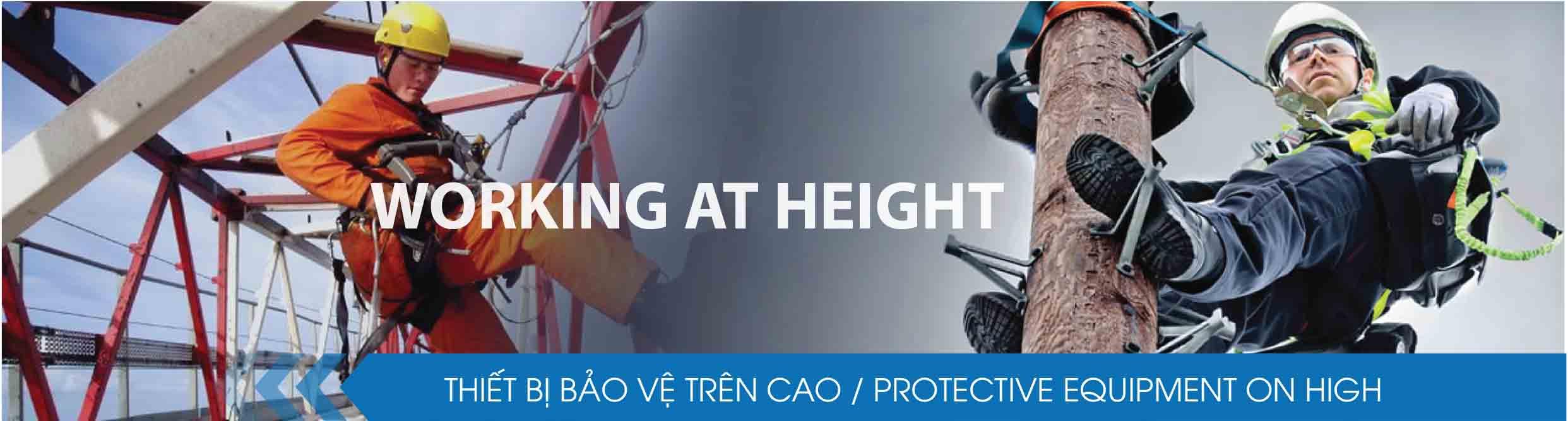 (Tiếng Việt) Bảo hộ trên cao